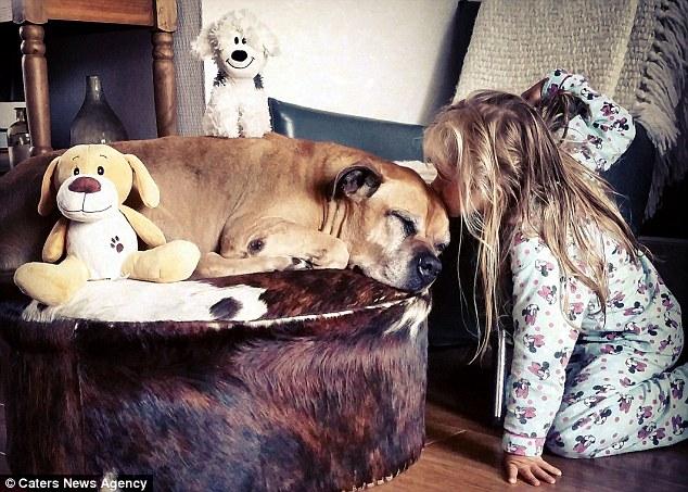 Trước khi chết Jaden của ông Bakker đã quyết định để nắm bắt những khoảnh khắc từ tình bạn đặc biệt của con gái với thú cưng của họ trong một loạt các hình ảnh quyến rũ